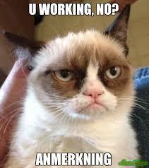 Whatever Memes - yeaaah christmas or whatever meme grumpy cat reverse 38792