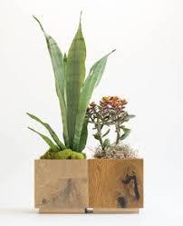 geometric wood planter mini succulent planter modern indoor wooden