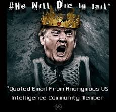 Jail Meme - he will die in jail meme quote from anonymous intelligence