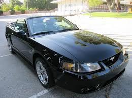 2001 Black Mustang 2001 Ford Mustang Svt Cobra For Sale 73 Used Cars From 6 995