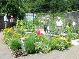 flowers for vegetable garden growing the future garden national botanic garden of wales