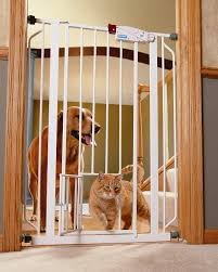 Child Gates For Stairs Amazon Com Carlson Extra Tall Pet Gate With Small Pet Door Pet