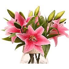 Lilies Flowers Amazon Com Sweet Home Deco 22 U0027 U0027 Silk Stargazer Lily Artificial