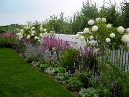 Fence Line Landscaping by Lavender And White Floral Border Harmonia Creative Landscapes