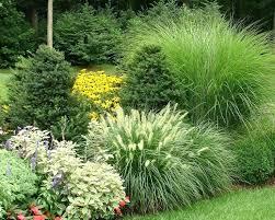 evergreen garden plans exhort me