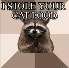 Funny Raccoon Meme - i stole your cat food evil plotting raccoon meme on memegen