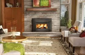 Insert For Wood Burning Fireplace by Epi3c Wood Burning Contempory Black Front Fireplace Insert