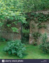 wrought iron gate in old brick wall in walled garden with lush