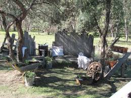 rustic gardening ideas home and heart diy