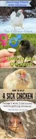 15 chicken nesting box hacks astroturf chicken nesting boxes