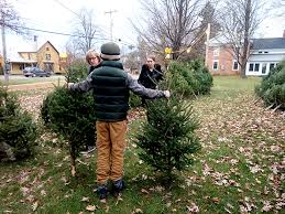 christmas tree sale boy scout christmas tree sale proceeds go a way shelburne news