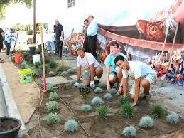 native plants for rain gardens lindblade street rain garden ballona creek renaissance