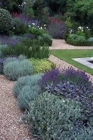 Backyard Decor Pinterest Best 25 Mediterranean Garden Ideas On Pinterest Mediterranean