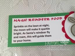 debbie u0027s designs craft fair magic reindeer food u0026 santa keys