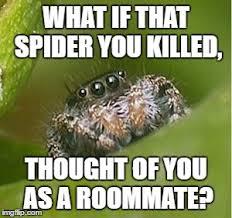 Spider Meme Misunderstood Spider Meme - misunderstood spider imgflip