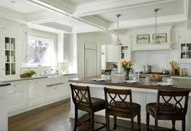 architectural kitchen traditional kitchen boston by dalia