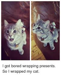 Wrapping Presents Meme - i got bored wrapping presents so i wrapped my cat bored meme on