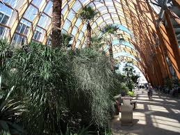 the winter garden sheffield things to do in photo shared by