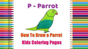 how to draw parrot coloring pages alphabets coloring pages
