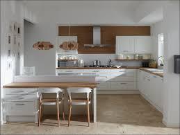 Modern Dark Kitchen Cabinets Kitchen White Kitchen Cabinets With Black Appliances Premade