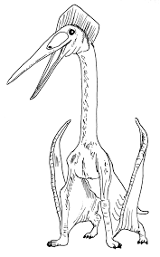 everything dinosaur blog dinosaur models