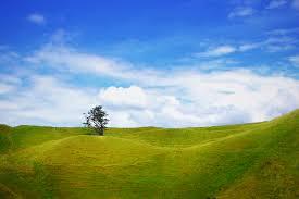 tutorial fotografi landscape saturasi