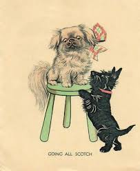 691 best scottie cards images on greetings