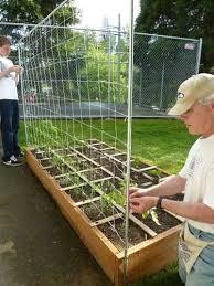 Simple Trellis Ideas Tomato Trellis Vegetable Trellis Vertical Gardening Checking