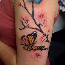 black yellow colored butterfly with pink flowers on