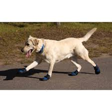 ultra paws cool dog boots backcountry k 9