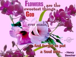 Flower Love Quotes by Flowers Quotes Graphics Page 2