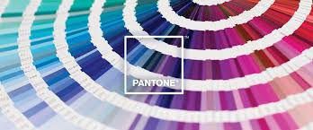 Colors That Match With Purple Search Find A Pantone Color