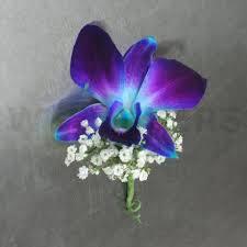 Wedding Flowers Ottawa Orchid Boutonniere Blue Orchid Boutonniere W Flowers Ottawa