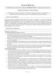 Security Resume Examples by Security Resume Examples Resume Professional Writers