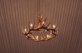 antler chandeliers and lighting company antler chandelier 15 light silk estate