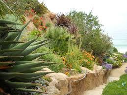 roger s gardens ca friendly design ideas arid 9