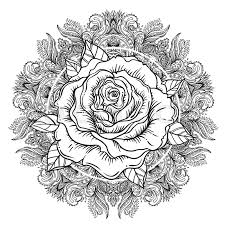 rose flower over mandala tattoo flash highly detailed vector