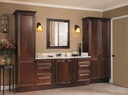 neat bathroom ideas bathroom cabinets awesome bathroom cabinets accessories