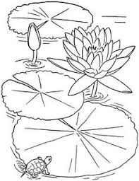 lotus flower coloring flower coloring pages