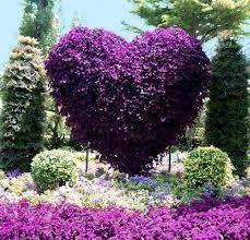 134 best creaciones con flores images on pinterest flowers
