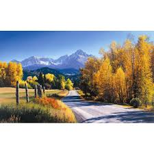 york wallcoverings 15 ft x 9 ft autumn landscape wall mural