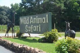 Georgia wild animals images Go wild animal encounters in and around atlanta jpg