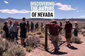 nevada native plant society discovering the nature of nevada val in real life