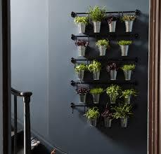 plant wall hangers indoor hanging wall planters indoor sustainablepals org