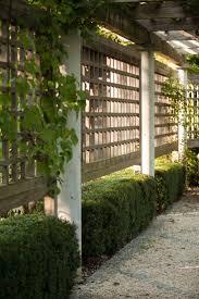 Garden Privacy Screen Ideas Backyard Wonderful Outdoor Privacy Screen Ideas Garden Uk