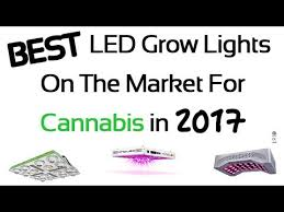 Best 25 Marijuana Grow Lights by 25 Best Led Grow Lights For Cannabis In 2017 Review And Guide