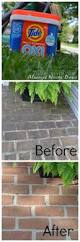 cleaning algea off your brick pathway with tide oxi part of the