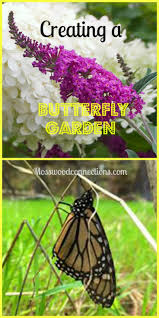 breathtaking pre planned butterfly garden 20 with additional home