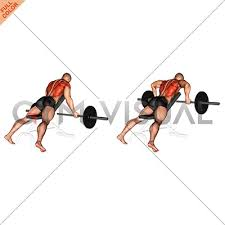 Incline Bench Dumbbell Rows Reverse Grip Incline Bench Row
