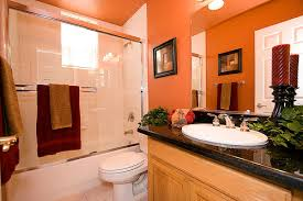 traditional bathroom decorating ideas contemporary stylish orange bathroom decor pictures photos